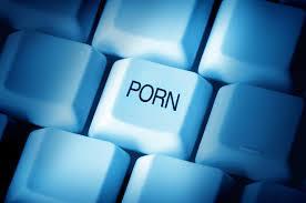 La Voix du X - Chiffres du porno (Les) - Visuel (1)