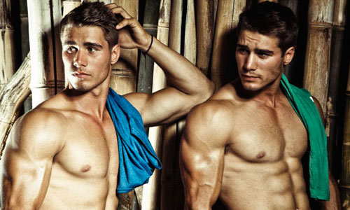 lvdx-gay-jumeaux-gays-du-x-visuel-14-jason-osbourne-and-alex-brown-non-x-mais-en-couple