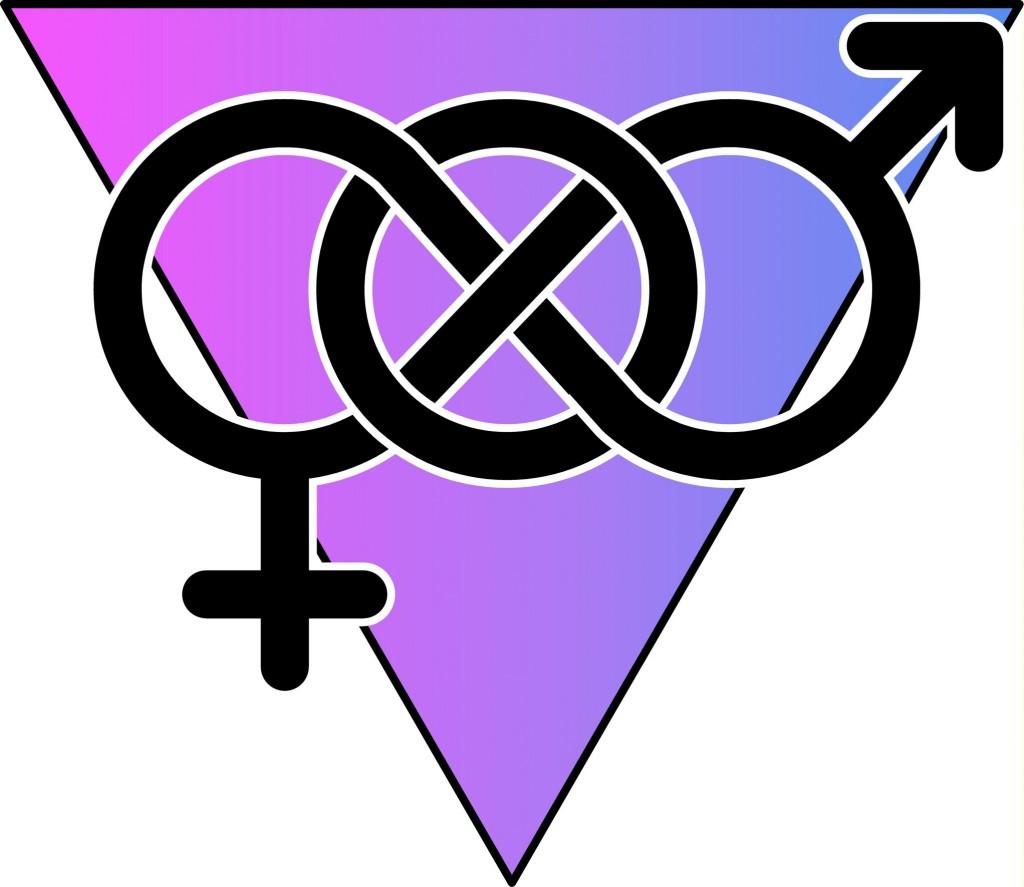lvdx-bisexualite-la-visuel-8