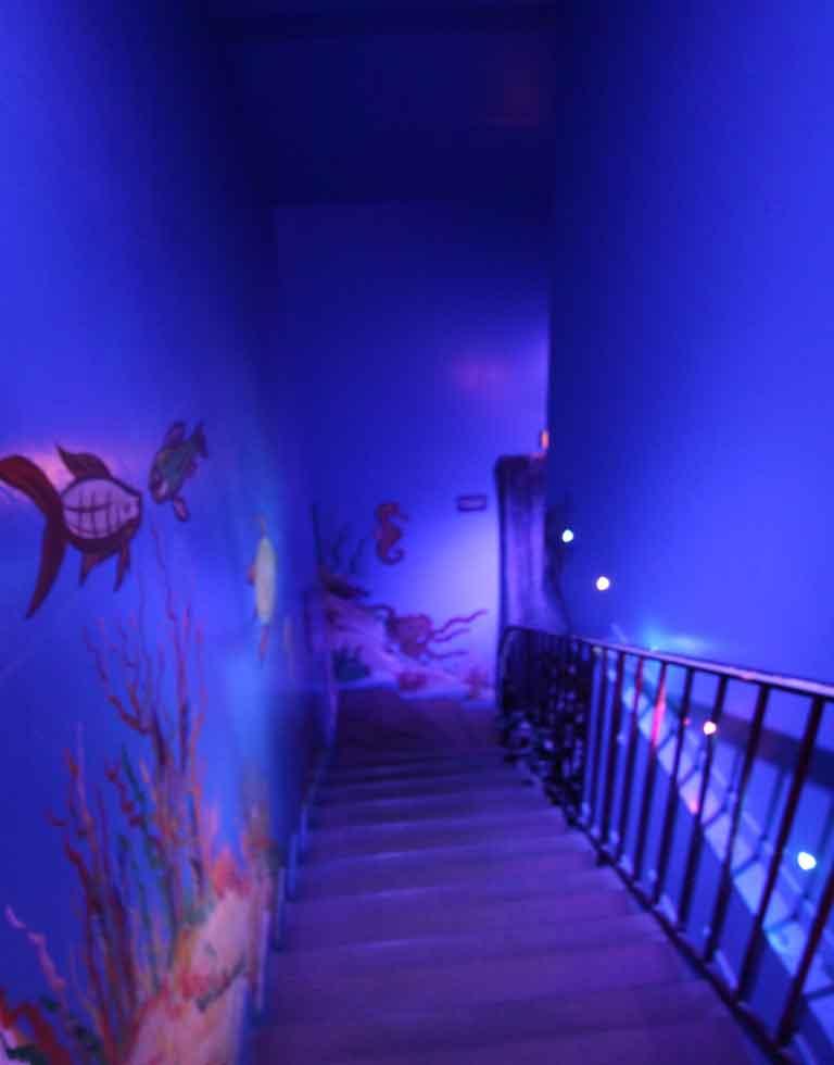 lvdx-club-hyppocampe-l-visuel-7-atmosphere-marine